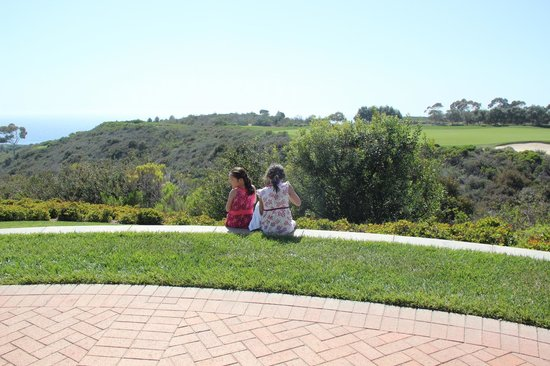 The Resort at Pelican Hill: View of ocean from the grounds