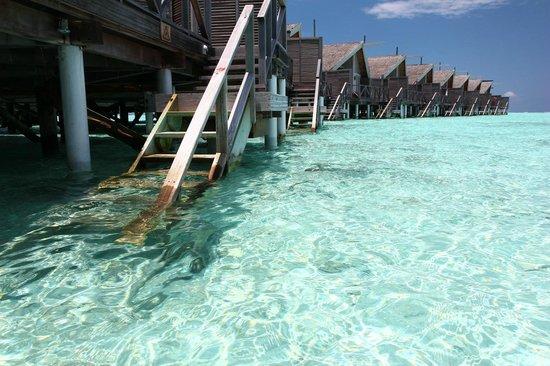 LUX* South Ari Atoll: Descend into Water
