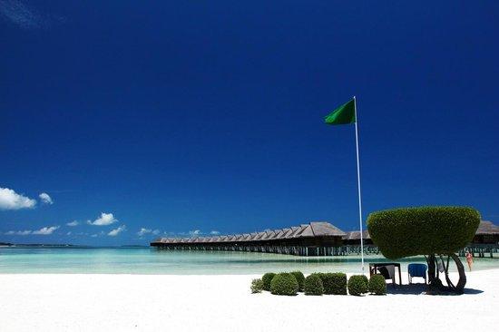 LUX* South Ari Atoll: Green means OK to Swim