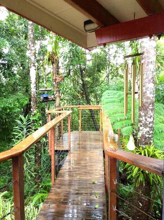 Sharlynn B&B: the walkway at the back