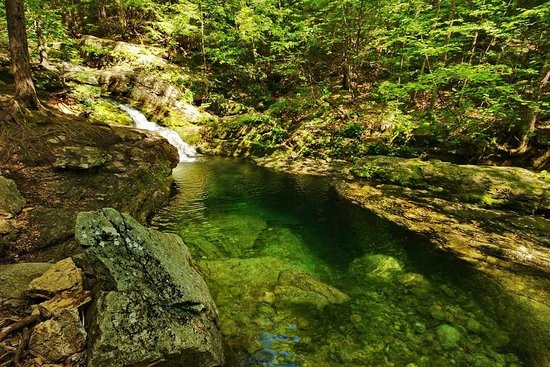 AMC Cold River Camp : Hike to nearby mountain pools