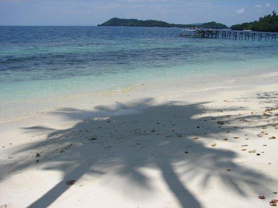 Raja Ampat Biodiversity Eco Resort: Resort beach and jetty