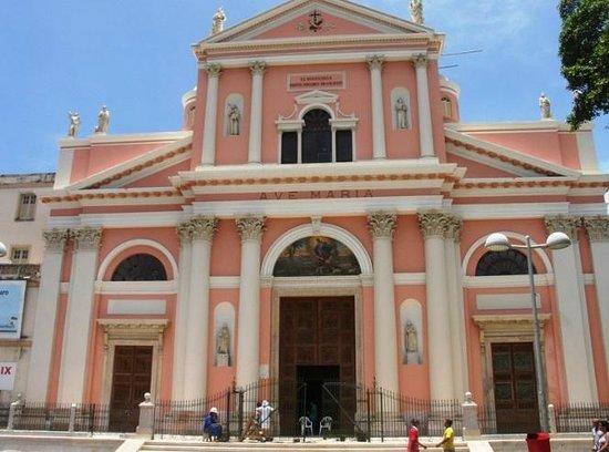 Dom Vital Museum