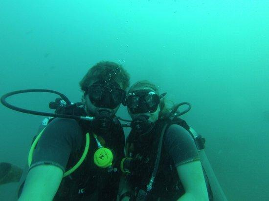 DJL Diving: Under water in Koh Tao
