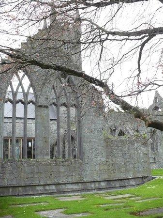 Ashford Court Boutique Hotel: Ennis Friary. Convento francescano del 14° secolo.