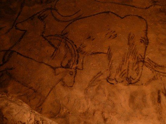 Rouffignac-Saint-Cernin-de-Reilhac, France: Пещера Руффиньяк, потолок