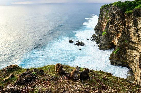 Bali Tour and Adventures - Tur Harian