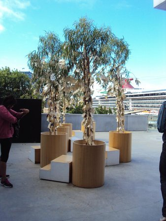 Museum of Contemporary Art: Wish Tree - Yoko Ono