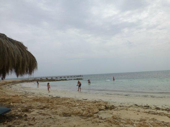 El Mouradi Djerba Menzel : La plage