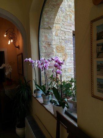 Hotel Palazzo del Capitano Exclusive Wellness & Relais: Verso il giardino