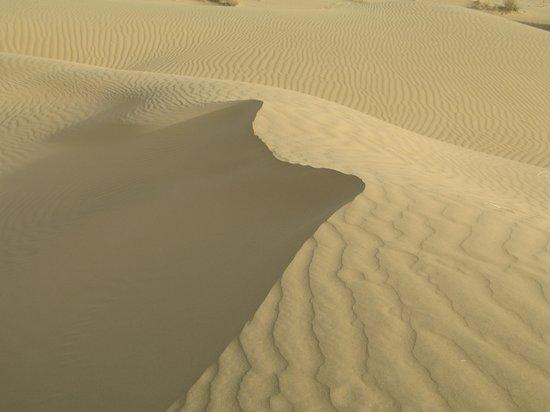 Desert Anna Safari Hotel & Camp: camel safari