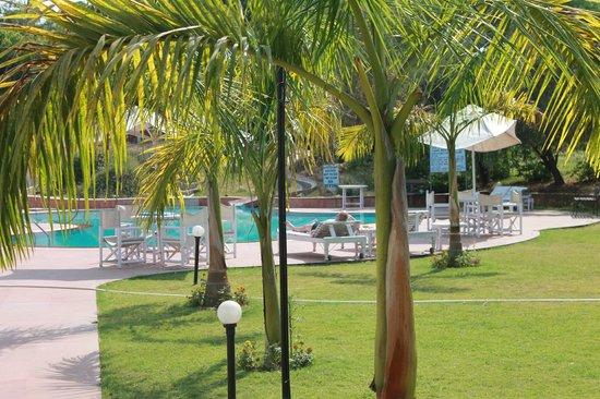 Hotel Usha Bundela: Garden and pool