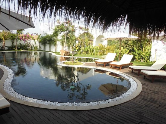 Navutu Dreams Resort & Wellness Retreat: Lounge Pool