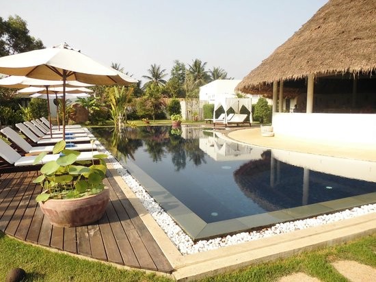 Navutu Dreams Resort & Wellness Retreat: Lap Pool