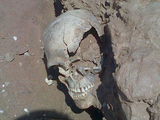 Kuiseb Delta Adventures: Bushman skeleton