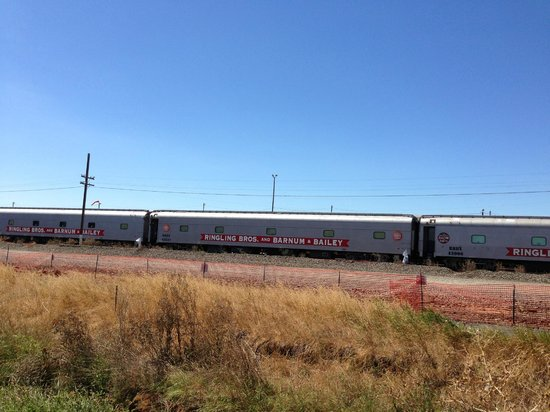 Ringling Brothers Train Parked Milpitas Railroad Track