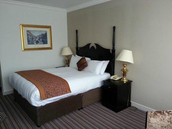 Ballsbridge Hotel : Habitación doble standar