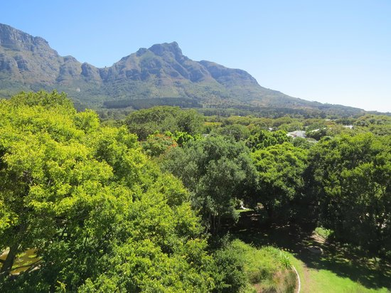 Vineyard Hotel : View from room 336