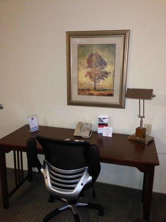 Staybridge Suites Tampa East - Brandon : work desk