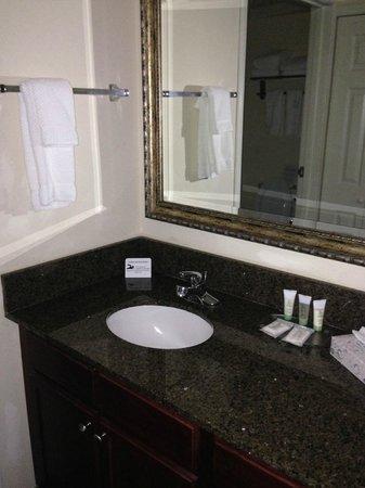 Staybridge Suites Tampa East - Brandon: sink