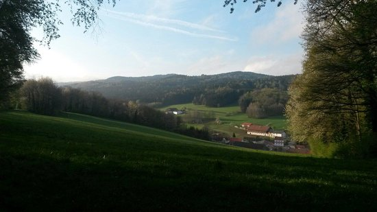 Ulrichsgrun: Die Umgebung