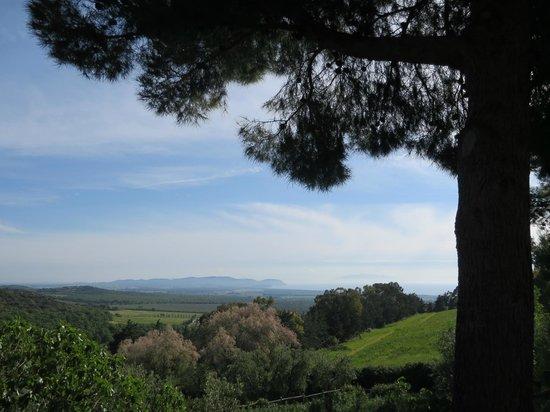 Relais Poggio Ai Santi: Landschaft