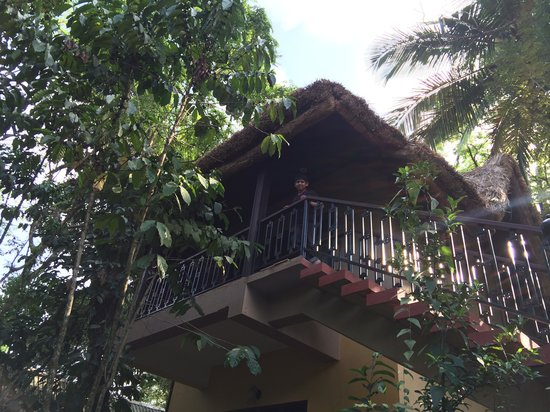 Club Mahindra Thekkady: Hut type Studio at Tusker Trails