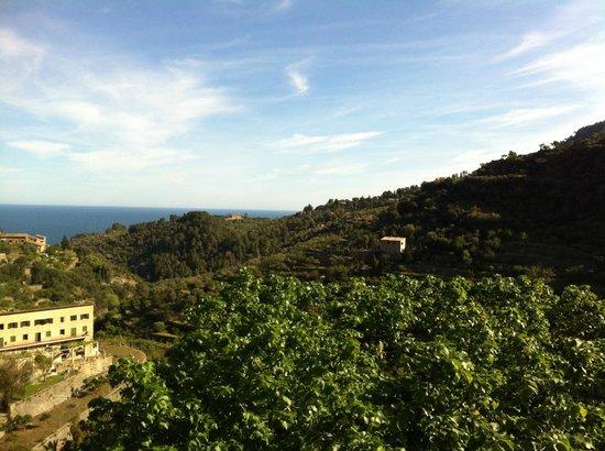 Es Moli Hotel: Blick von der Terasse