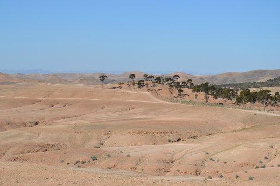 Kasbah Igoudar : désert d'AGAFE