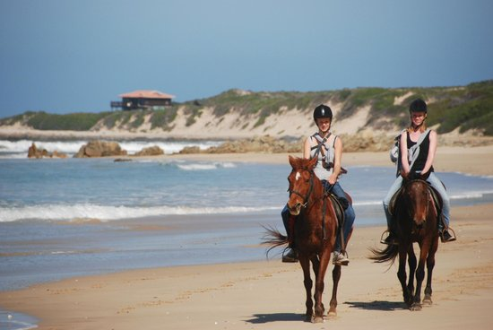 Oyster Bay Lodge: Horse Back Rides on the Beach
