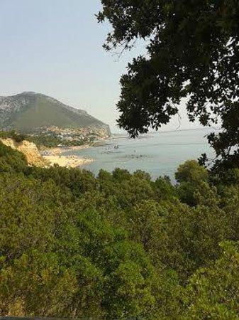 Hotel La Favorita: foto panoramica