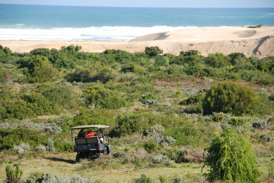 Oyster Bay Lodge: Eco outdoor activities