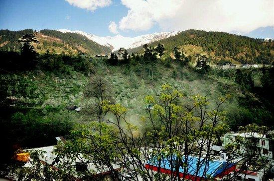 The Manali Inn : Amazing view