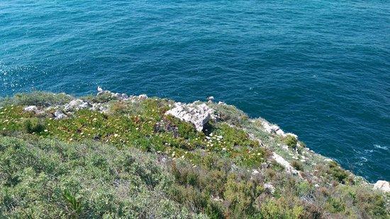 Sensimar Falesia Atlántic: View at Cape St Vincent (World's End)