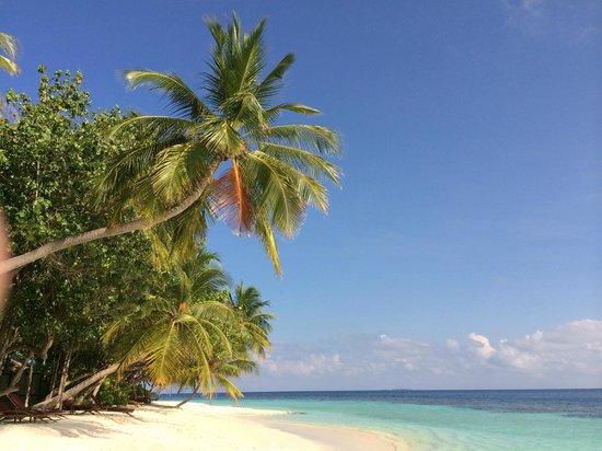 Angsana Ihuru : Paradise
