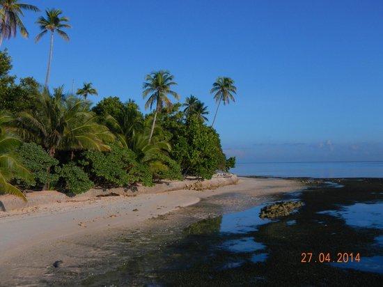 Patuno Resort Wakatobi: pemandangan dari restoran