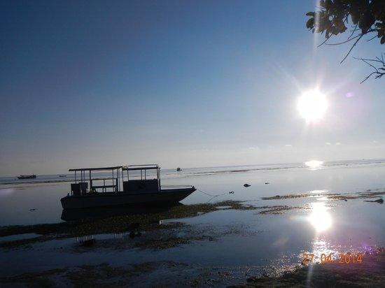Patuno Resort Wakatobi: matahari terbit