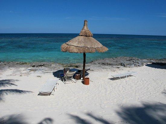 Club Med Cancun Yucatan: Un bout de la plage est coté scuba