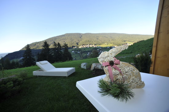 Hotel Digon: garden