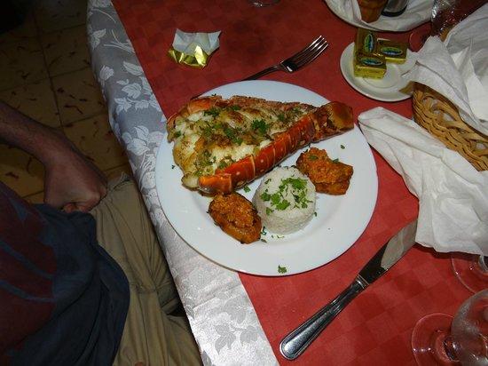 Hostal Casa Mia: Dinner: lobster