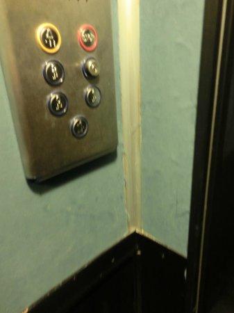 Clorinda Paestum Hotel: tappezzeria sfrangiata del piccolo ascensore