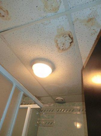 Clorinda Paestum Hotel: soffitto del bagno