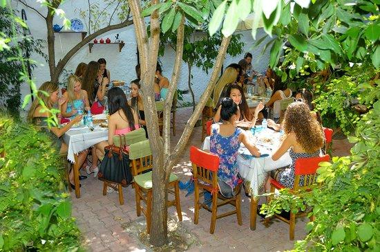 Hanimeli Restaurant : Bahçemiz...