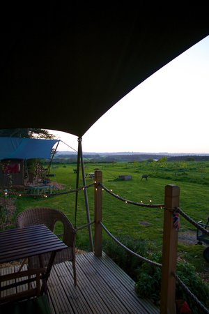 Tom's Eco Lodge : View from our deck
