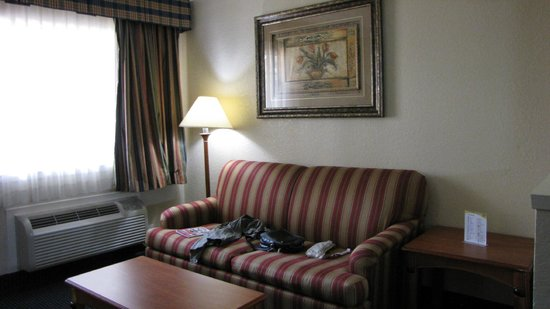 Downtowner Inn and Suites Hobby: CHAMBRE ARMCHAIR