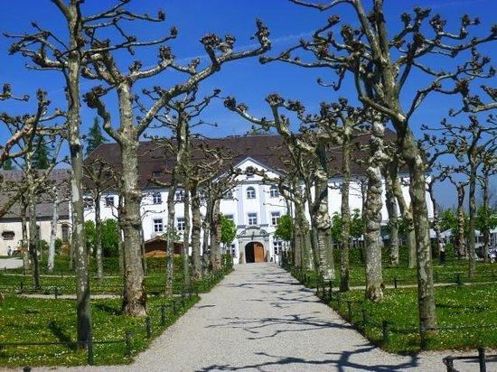 Schlosswirtschaft Herrenchiemsee: Blick in den Garten