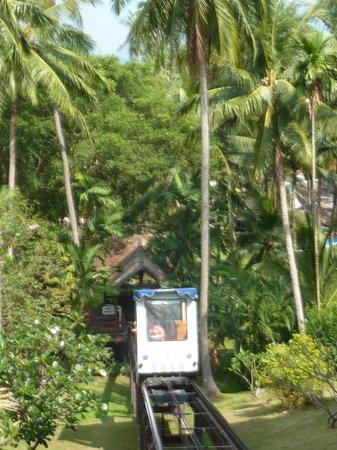 Cape Panwa Hotel : Funiculaire dans le parc