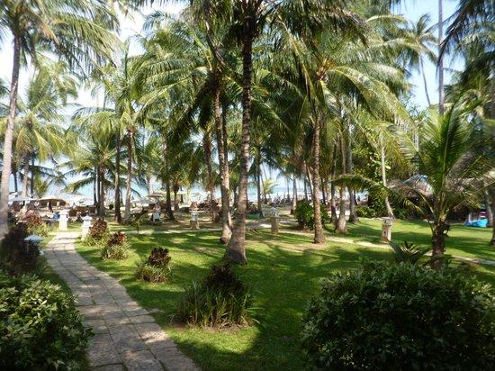 Cape Panwa Hotel : Parc vers la plage