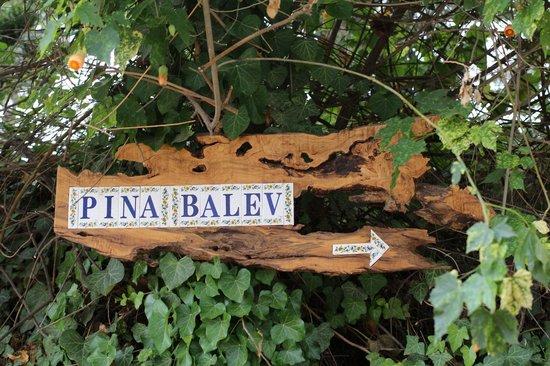 Pina Balev: entrance