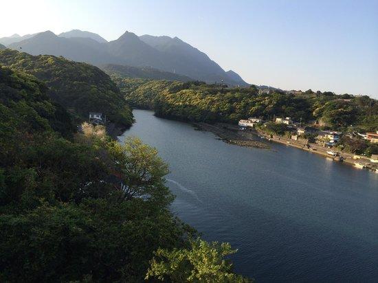 Hotel Yakushima-sanso: 部屋からの眺め